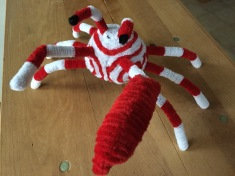 Pipe Cleaner Crab with Red and White Color