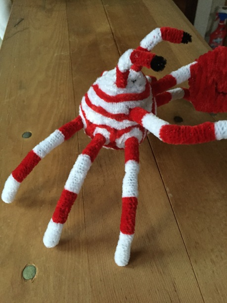 A pipe cleaner crab with a red and white pattern coloring and a detachable claw