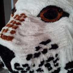 Closeup of the eyes and spots on the face of the pipe cleaner leopard