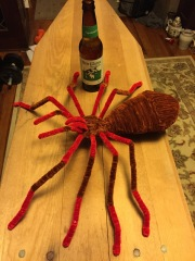 huge-chenille-stem-spider