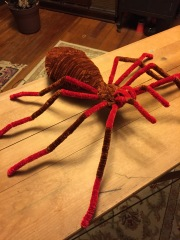 huge-pipe-cleaner-spider