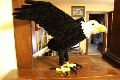 Pipe cleaner eagle completed animal side view
