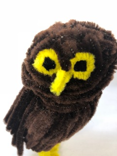 Pipe cleaner (chenille stem) owl face