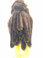 pipe cleaner owl tailfeathers