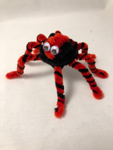 pipe cleaner spider 5