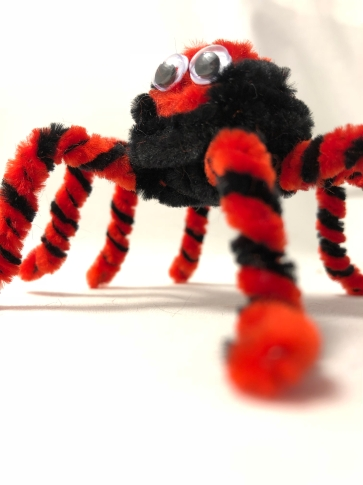 pipe cleaner spider close