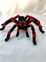 pipe cleaner tarantula 5