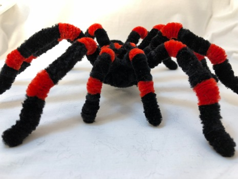 pipe cleaner tarantula face to face 2