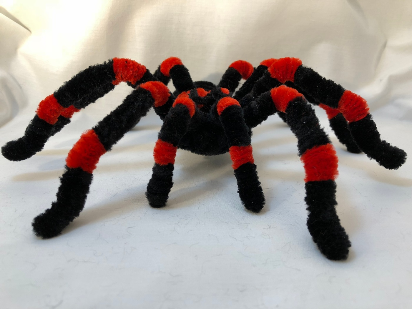 Pipe Cleaner Tarantula In 15 Steps Step By Step