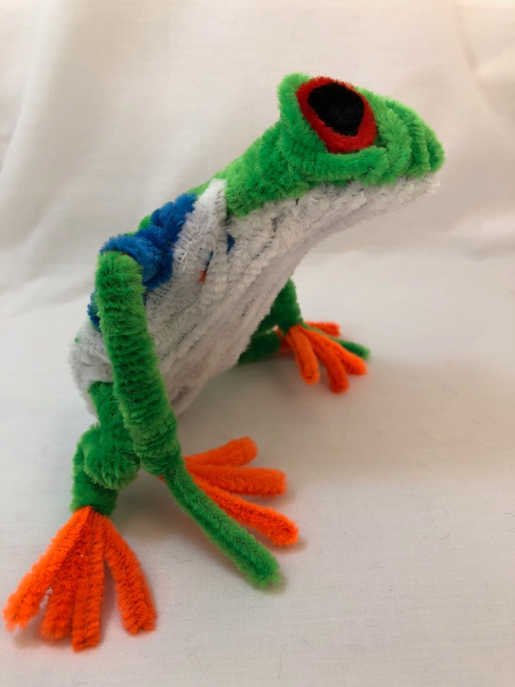 pipe cleaner tree frog 2