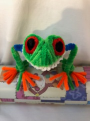 pipe cleaner tree frog face