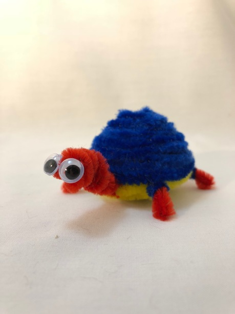 pipe cleaner tortoise side view