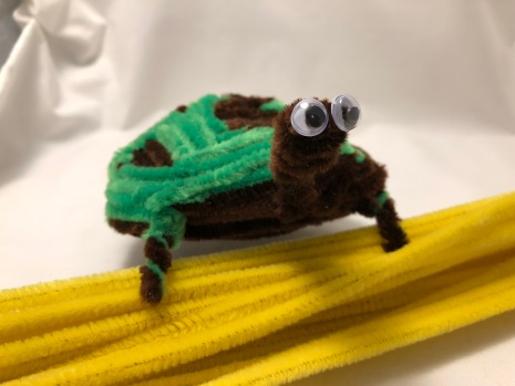 Pipe cleaner turtle completed