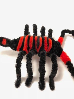scorpion body